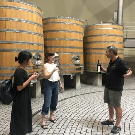Hawke's Bay Classic Wine Tour